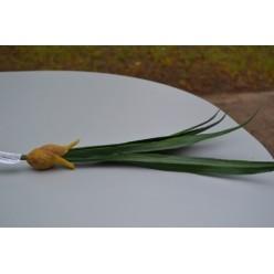 Цветок искусственный Лист с луковицей 40см AGT141