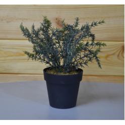 Цветок искусственный Розмарин горшке СV03168