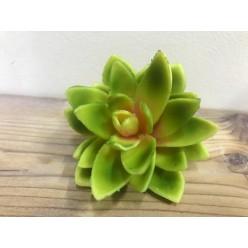Цветок искусственный Суккулент12см, QN91-0221D