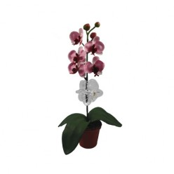 Зажим пластиковый для орхидей прозрачный 50.600.05