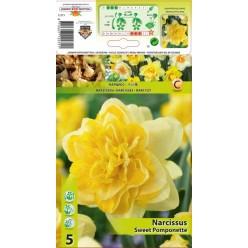 Нарцисс Sweet Pomponette 5шт р.12/14 луковица 12272