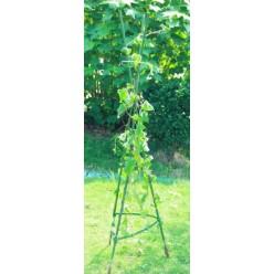 Опора для помидоров, вьющихся растений 11ммх150см EVA8198