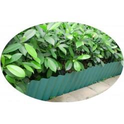 Лента бордюрная 10х600см зеленая LAR9614