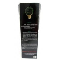 Самшит вечнозелёный (саженец декоративного кустарника), коробка